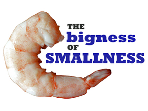Bigness_of_smallness_2